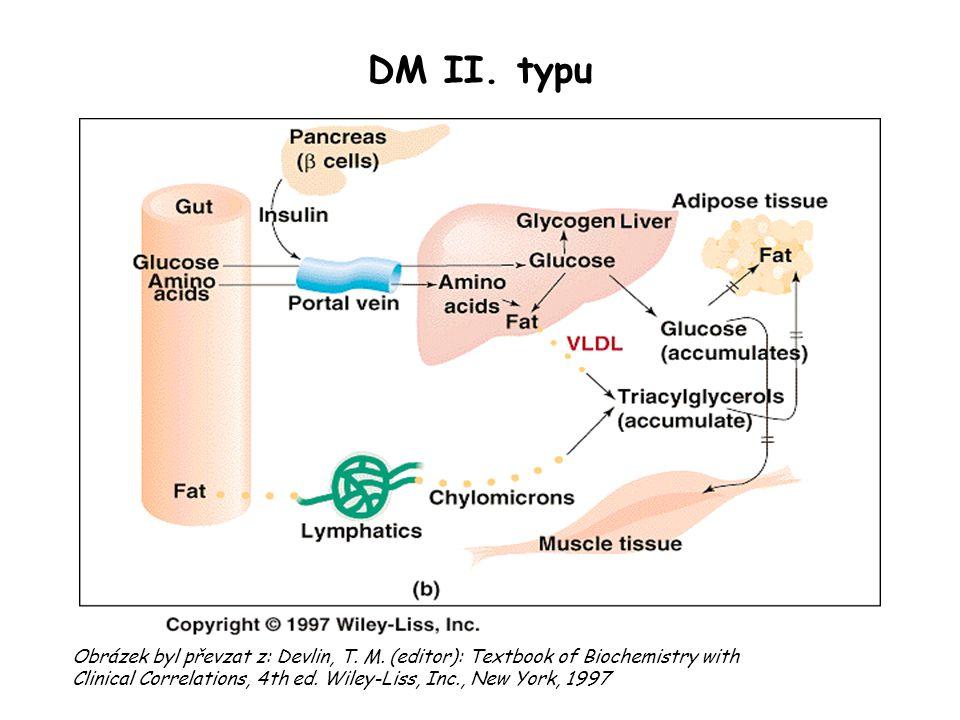 DM II. typu