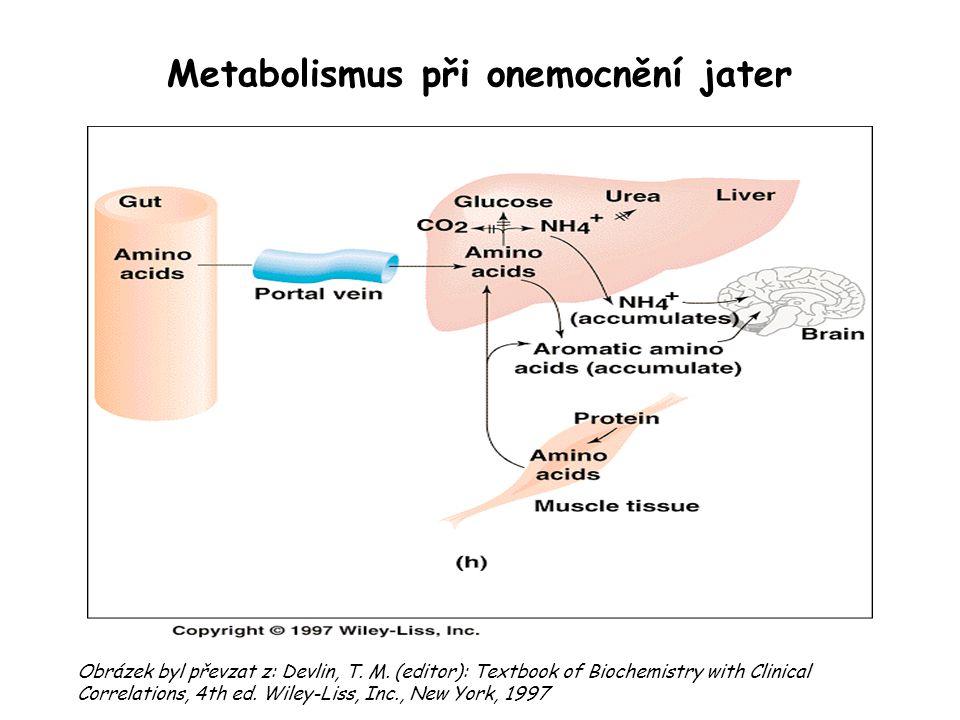 Metabolismus při onemocnění jater