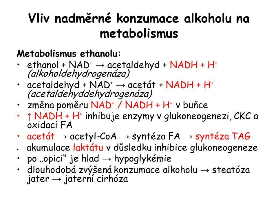 Vliv nadměrné konzumace alkoholu na metabolismus