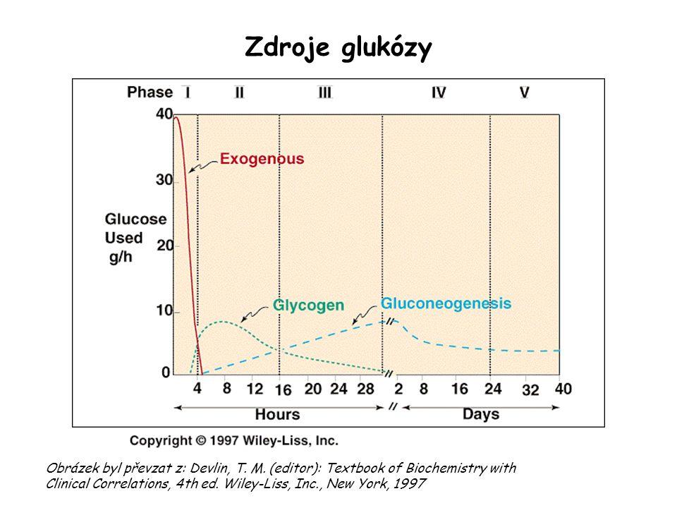 Zdroje glukózy
