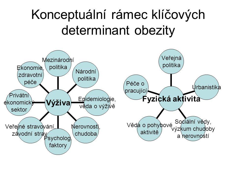 Konceptuální rámec klíčových determinant obezity