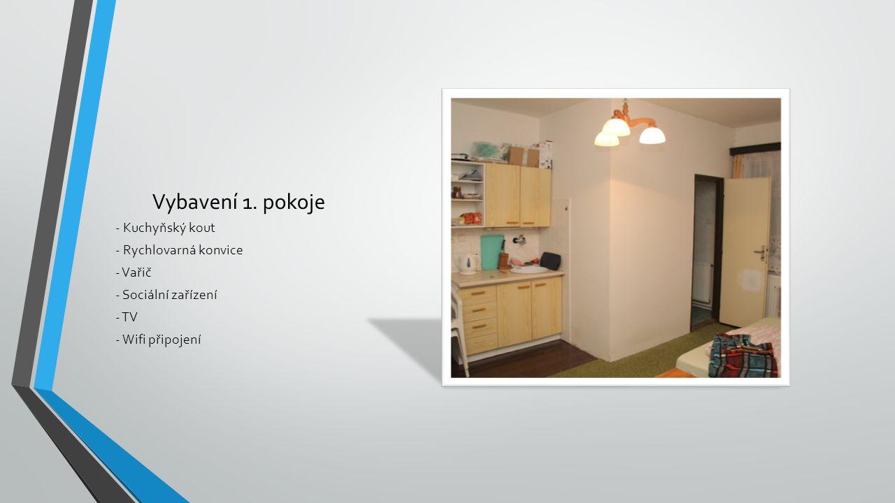 Vybavení 1. pokoje - Kuchyňský kout - Rychlovarná konvice - Vařič