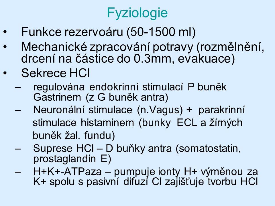 Fyziologie Funkce rezervoáru (50-1500 ml)