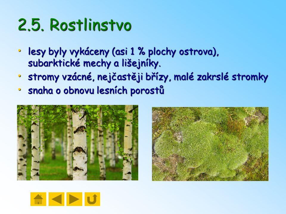 2.5. Rostlinstvo lesy byly vykáceny (asi 1 % plochy ostrova), subarktické mechy a lišejníky. stromy vzácné, nejčastěji břízy, malé zakrslé stromky.