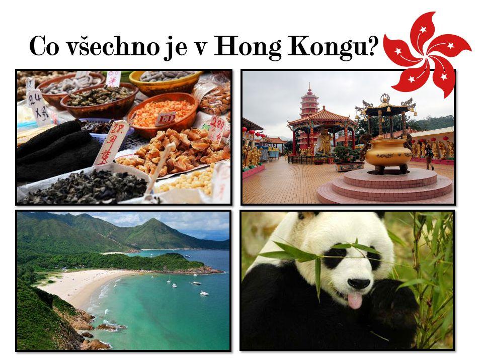 Co všechno je v Hong Kongu
