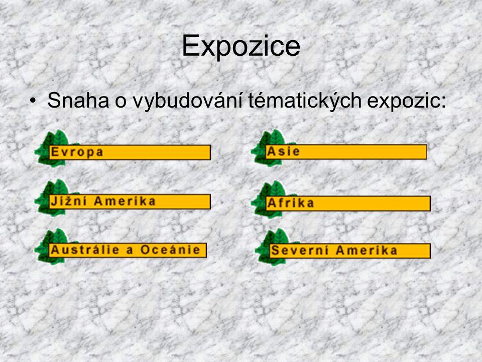 Expozice Snaha o vybudování tématických expozic: