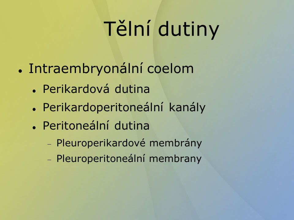 Tělní dutiny Intraembryonální coelom Perikardová dutina