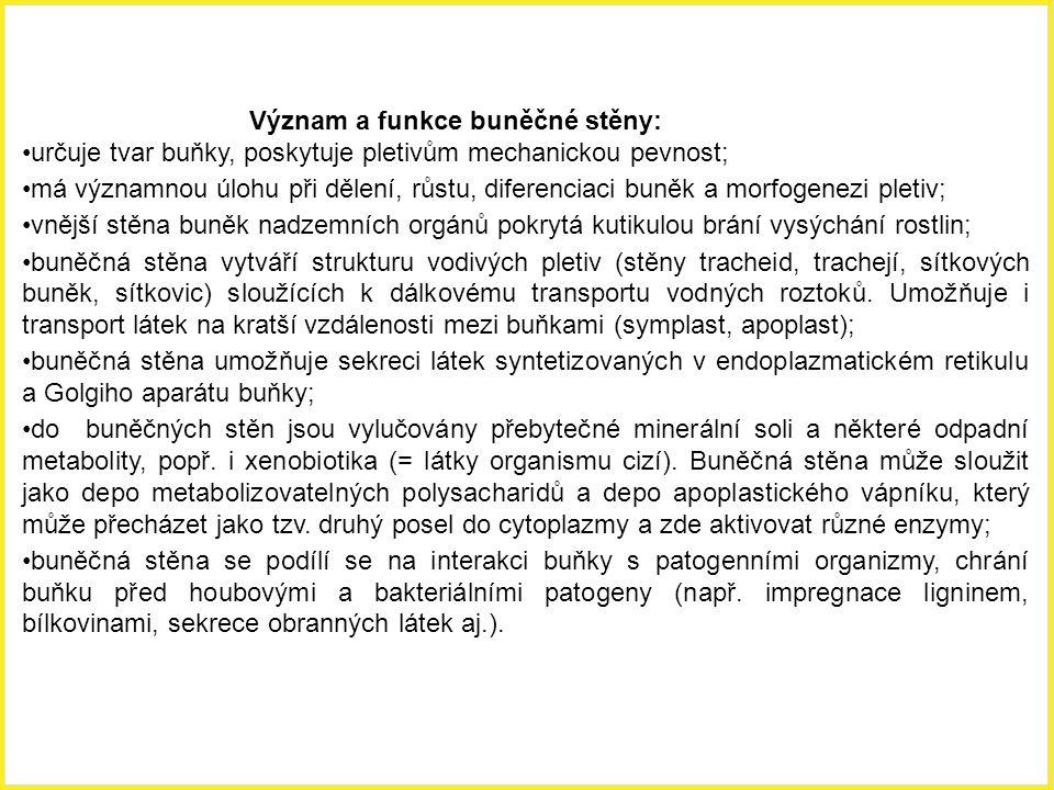 Význam a funkce buněčné stěny: