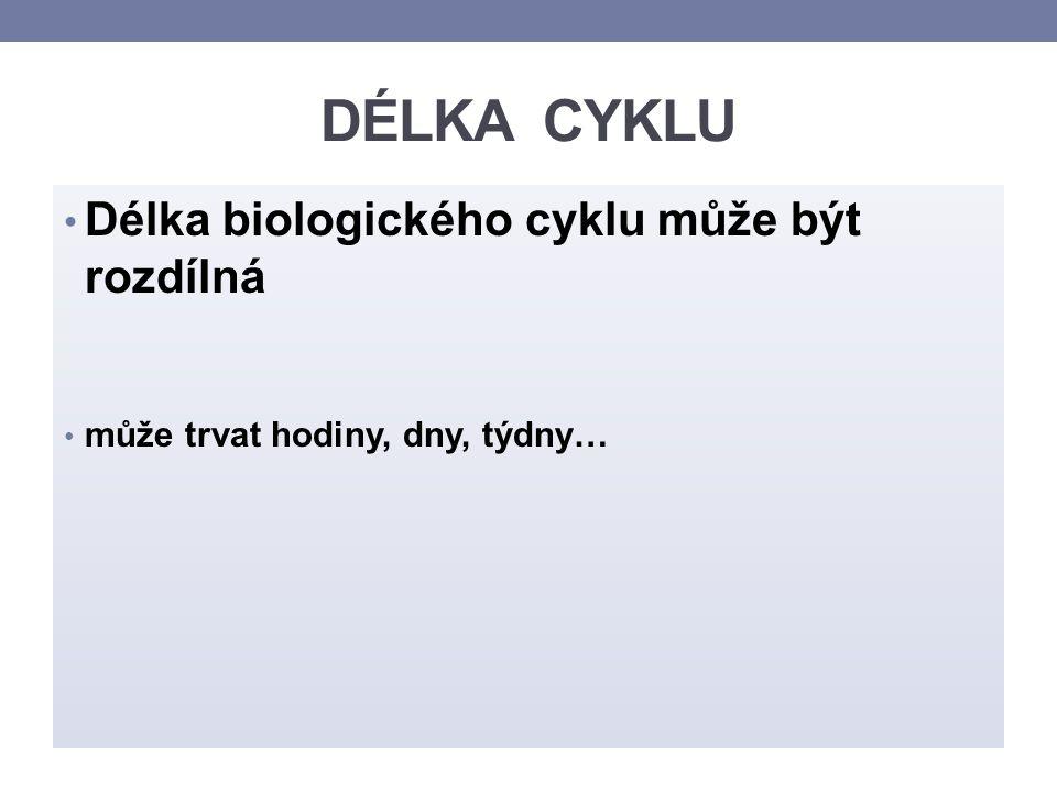 DÉLKA CYKLU Délka biologického cyklu může být rozdílná