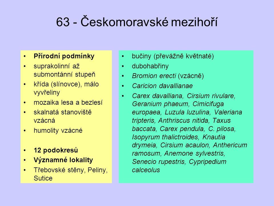 63 - Českomoravské mezihoří