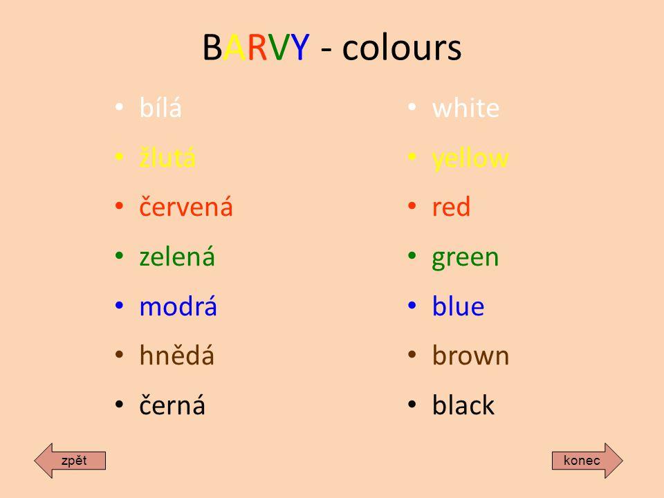 BARVY - colours bílá žlutá červená zelená modrá hnědá černá white