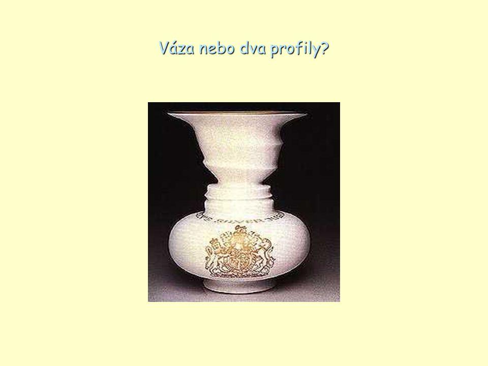 Váza nebo dva profily