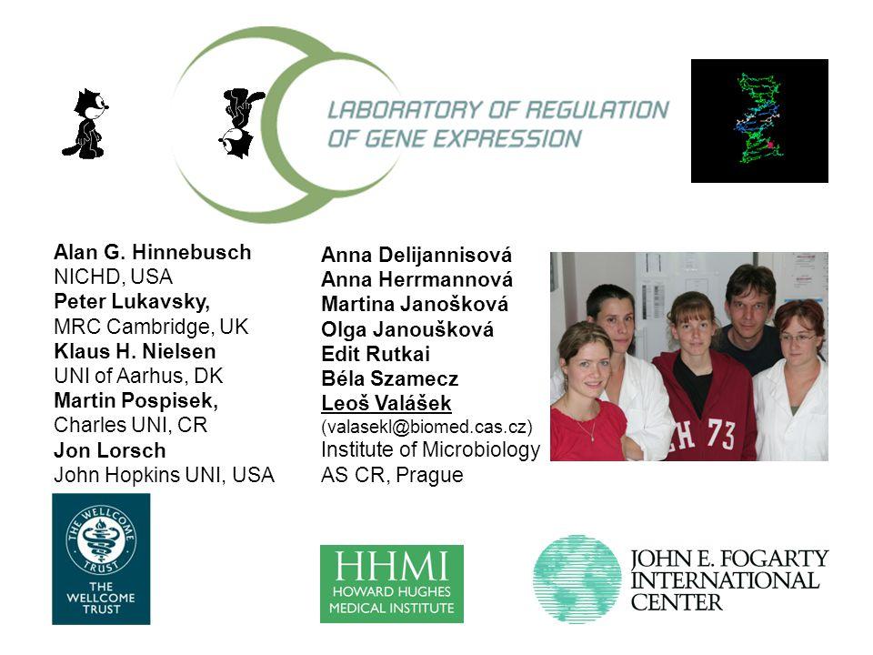 Anna Delijannisová Anna Herrmannová Martina Janošková Olga Janoušková Edit Rutkai Béla Szamecz Leoš Valášek (valasekl@biomed.cas.cz) Institute of Microbiology AS CR, Prague