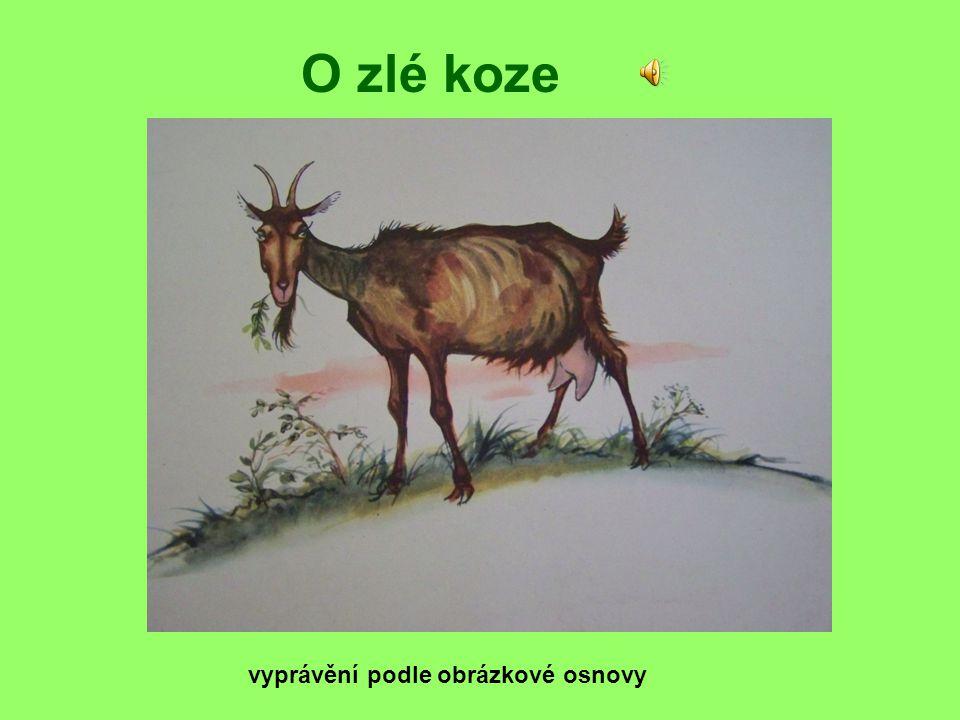 O zlé koze vyprávění podle obrázkové osnovy