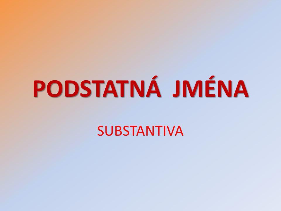 PODSTATNÁ JMÉNA SUBSTANTIVA