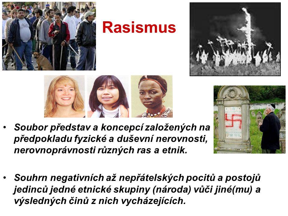 Rasismus Soubor představ a koncepcí založených na předpokladu fyzické a duševní nerovnosti, nerovnoprávnosti různých ras a etnik.