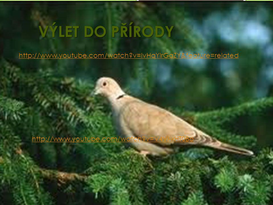 VÝLET DO PŘÍRODY http://www.youtube.com/watch v=IvHqYIrGaZY&feature=related.