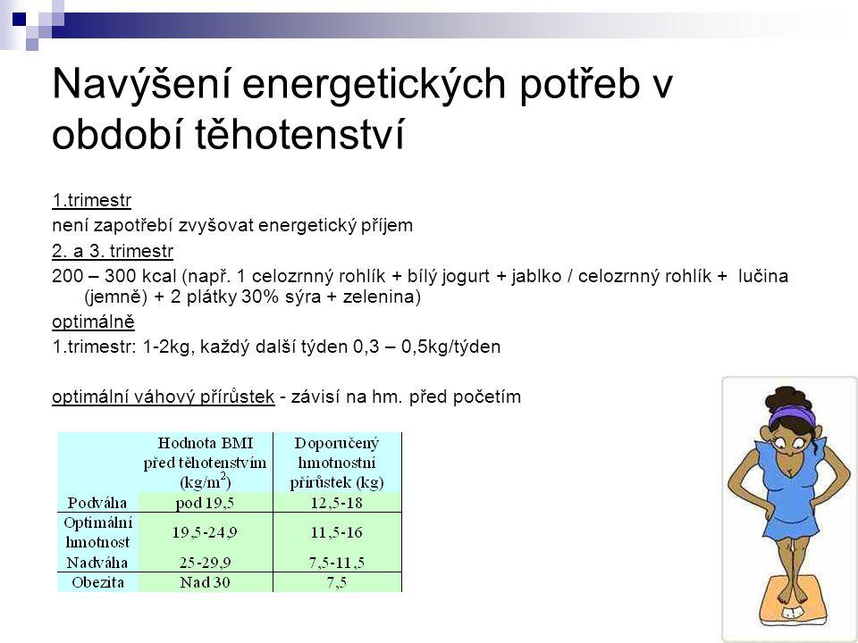 Navýšení energetických potřeb v období těhotenství