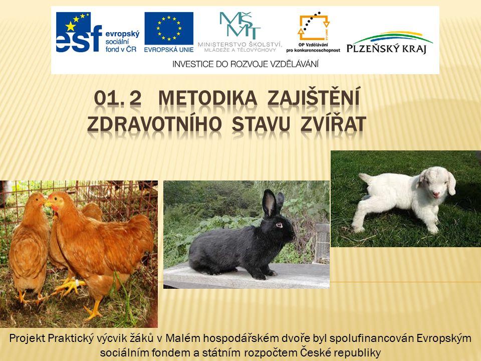 01. 2 METODIKA Zajištění zdravotního stavu zvířat