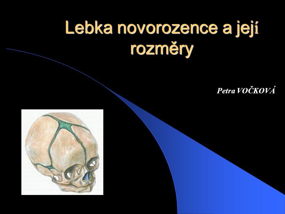 Lebka novorozence a její rozměry