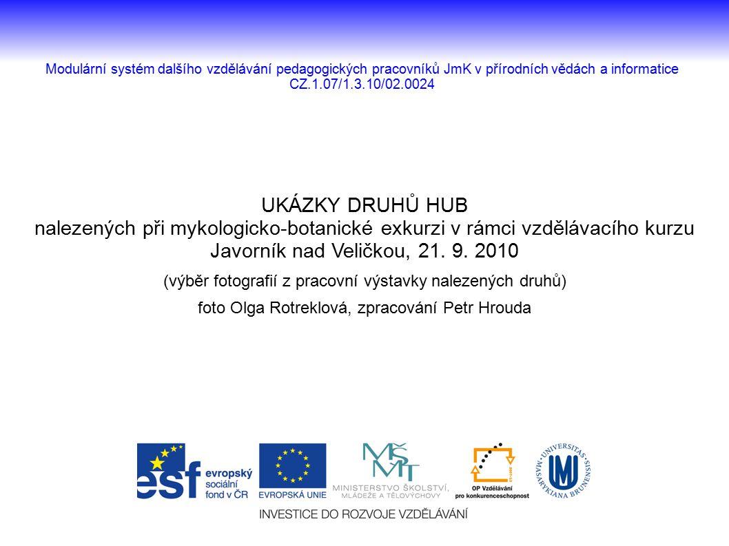 UKÁZKY DRUHŮ HUB nalezených při mykologicko-botanické exkurzi v rámci vzdělávacího kurzu. Javorník nad Veličkou, 21. 9. 2010.