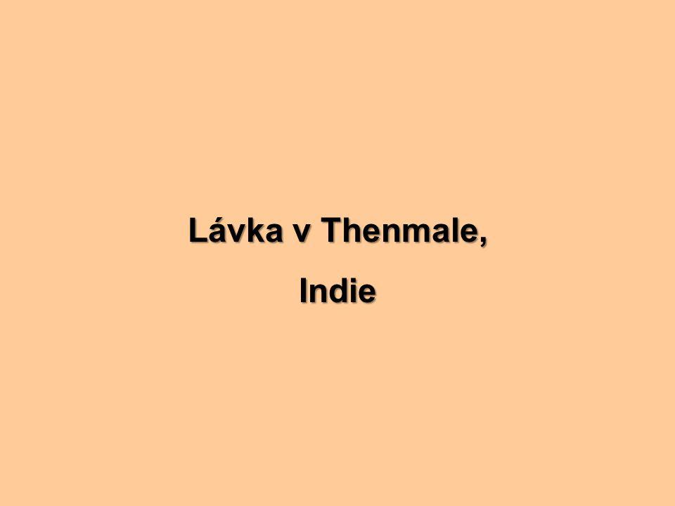Lávka v Thenmale, Indie