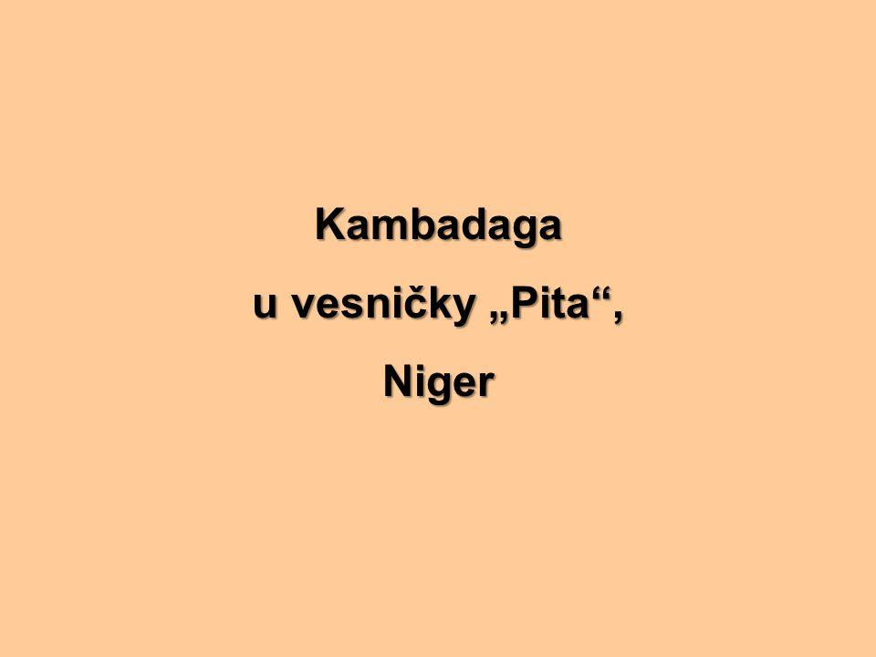 """Kambadaga u vesničky """"Pita , Niger"""