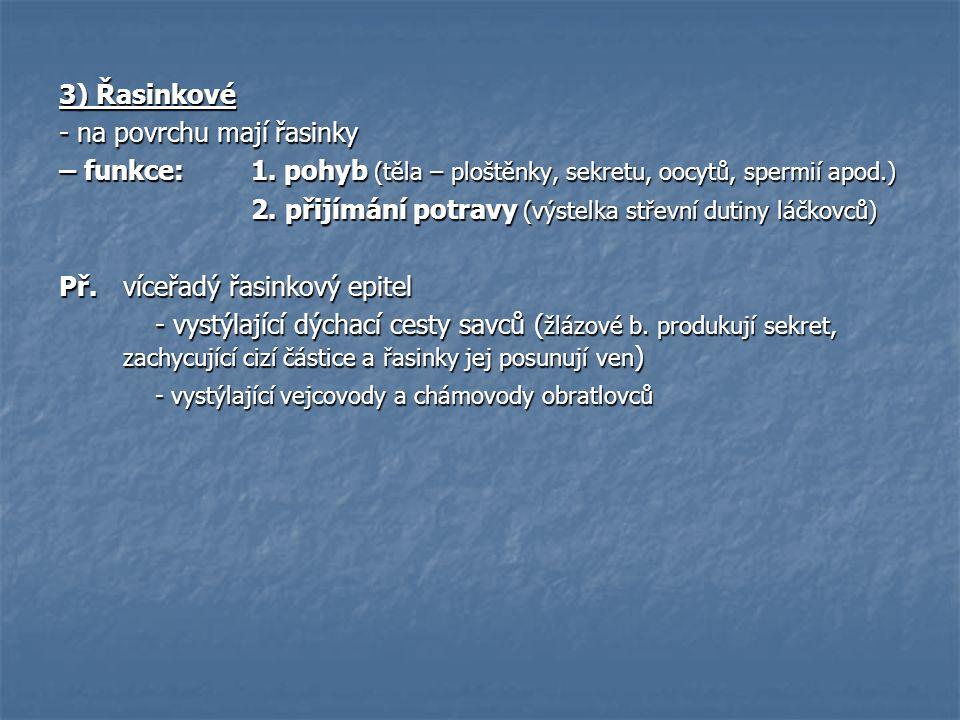 3) Řasinkové - na povrchu mají řasinky. – funkce: 1. pohyb (těla – ploštěnky, sekretu, oocytů, spermií apod.)