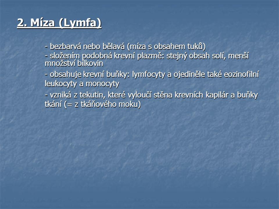 2. Míza (Lymfa) - bezbarvá nebo bělavá (míza s obsahem tuků)