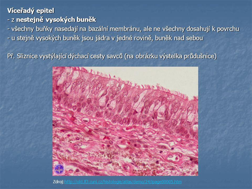 - z nestejně vysokých buněk