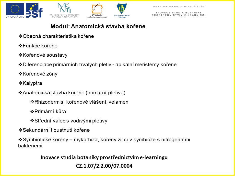 Inovace studia botaniky prostřednictvím e-learningu