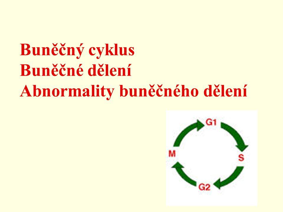 Buněčný cyklus Buněčné dělení Abnormality buněčného dělení