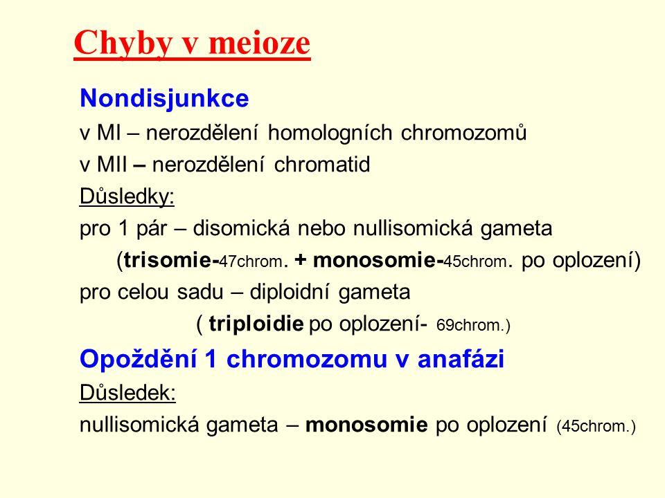 Chyby v meioze Nondisjunkce Opoždění 1 chromozomu v anafázi