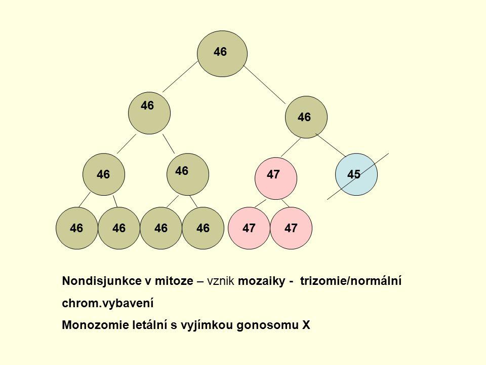 46 46. 46. 46. 46. 47. 45. 46. 46. 46. 46. 47. 47. Nondisjunkce v mitoze – vznik mozaiky - trizomie/normální chrom.vybavení.