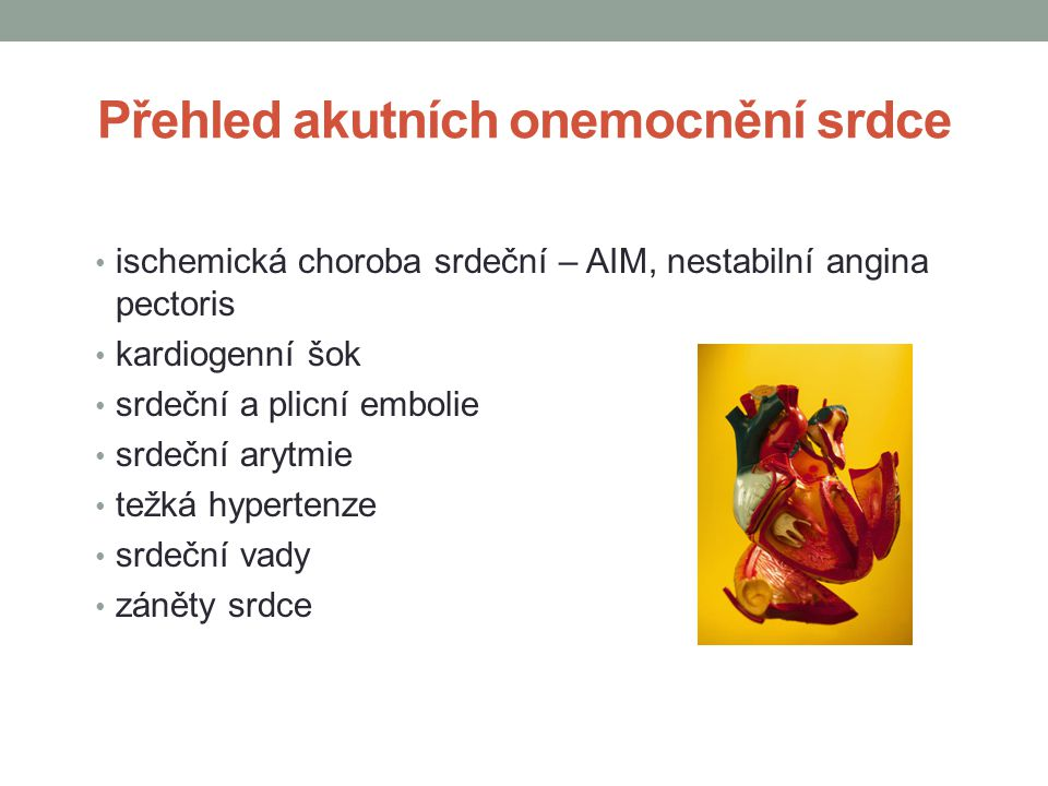 Přehled akutních onemocnění srdce