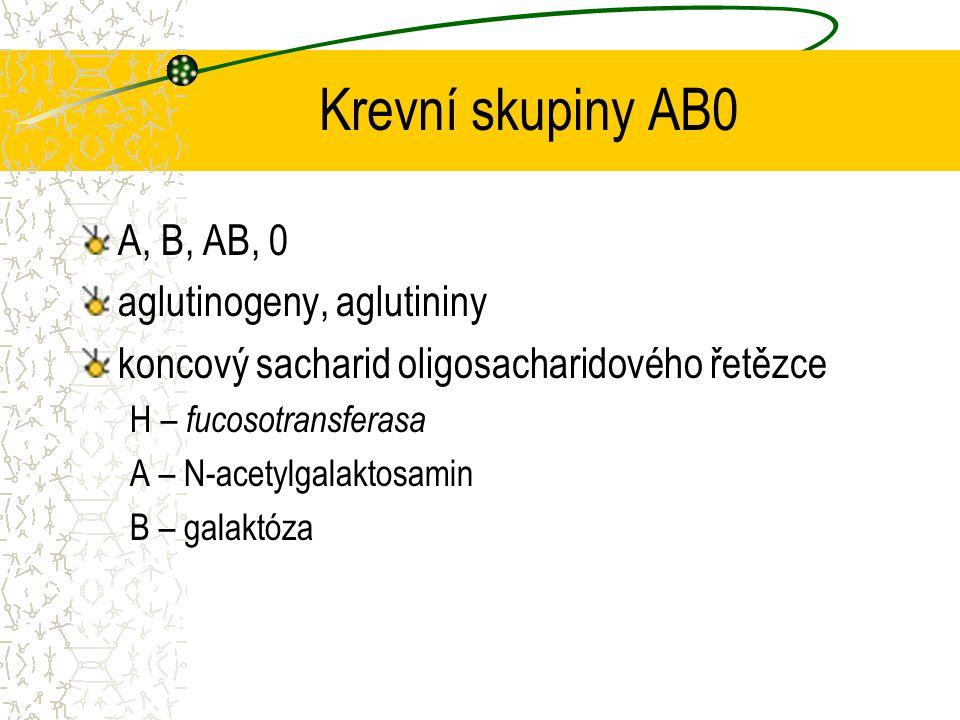 Krevní skupiny AB0 A, B, AB, 0 aglutinogeny, aglutininy