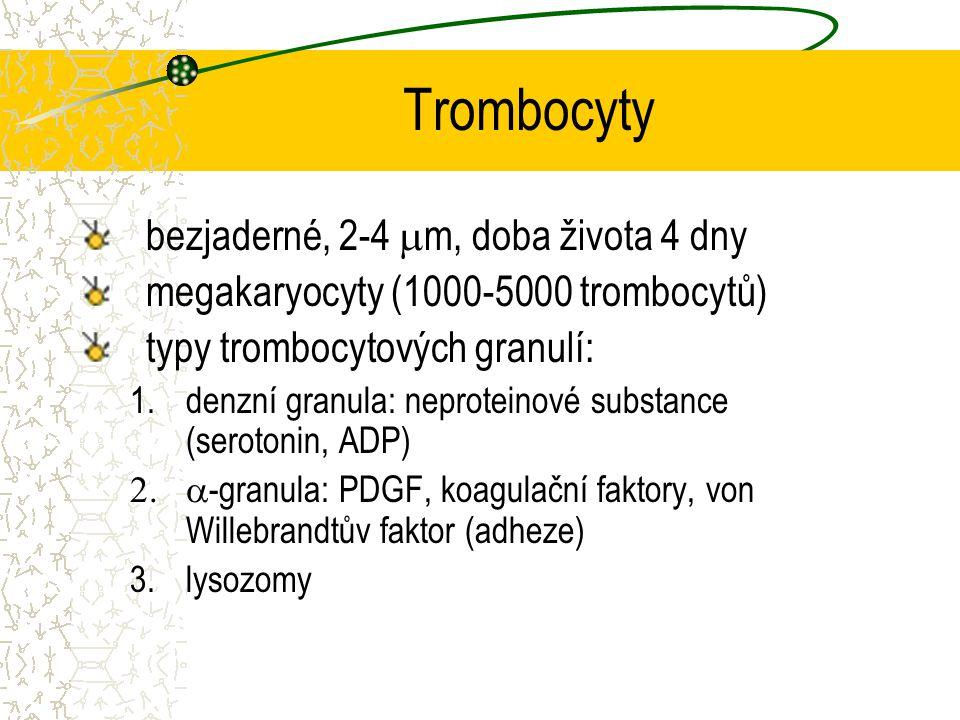 Trombocyty bezjaderné, 2-4 mm, doba života 4 dny
