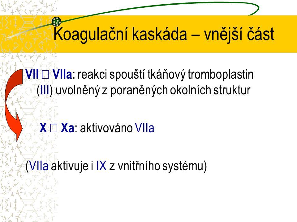Koagulační kaskáda – vnější část