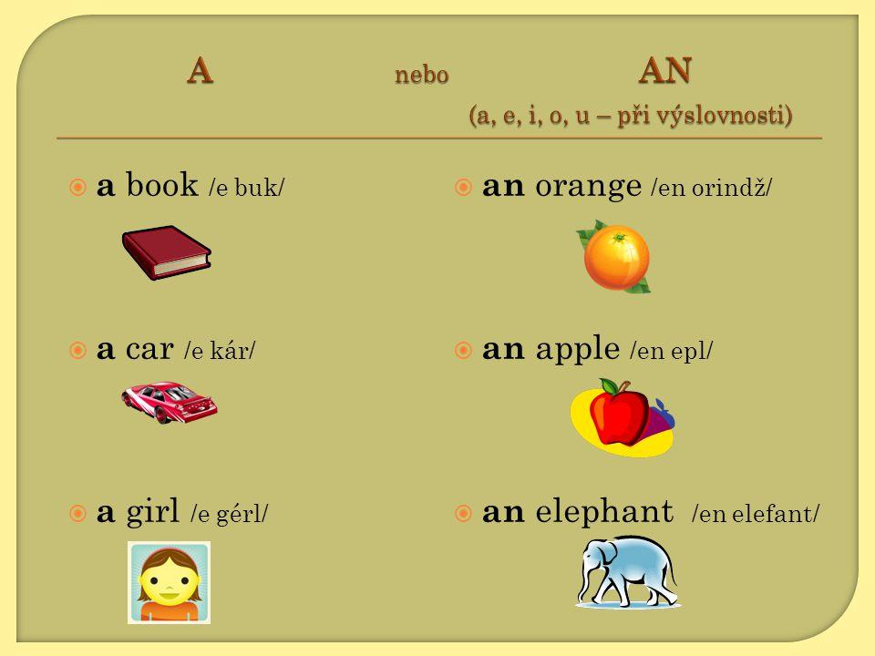 A nebo AN (a, e, i, o, u – při výslovnosti)