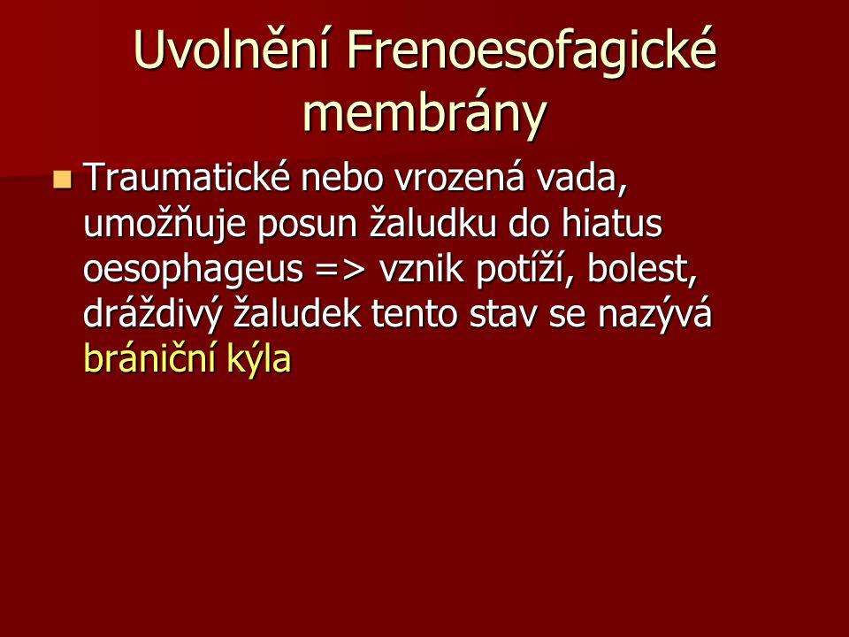 Uvolnění Frenoesofagické membrány