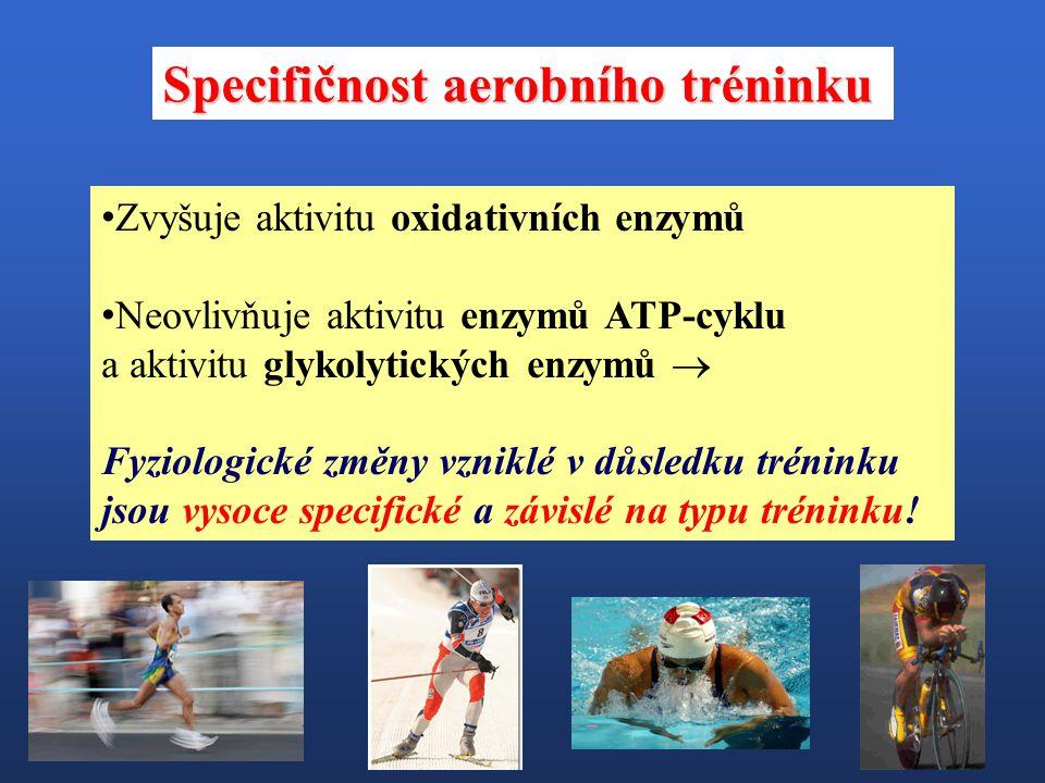Specifičnost aerobního tréninku