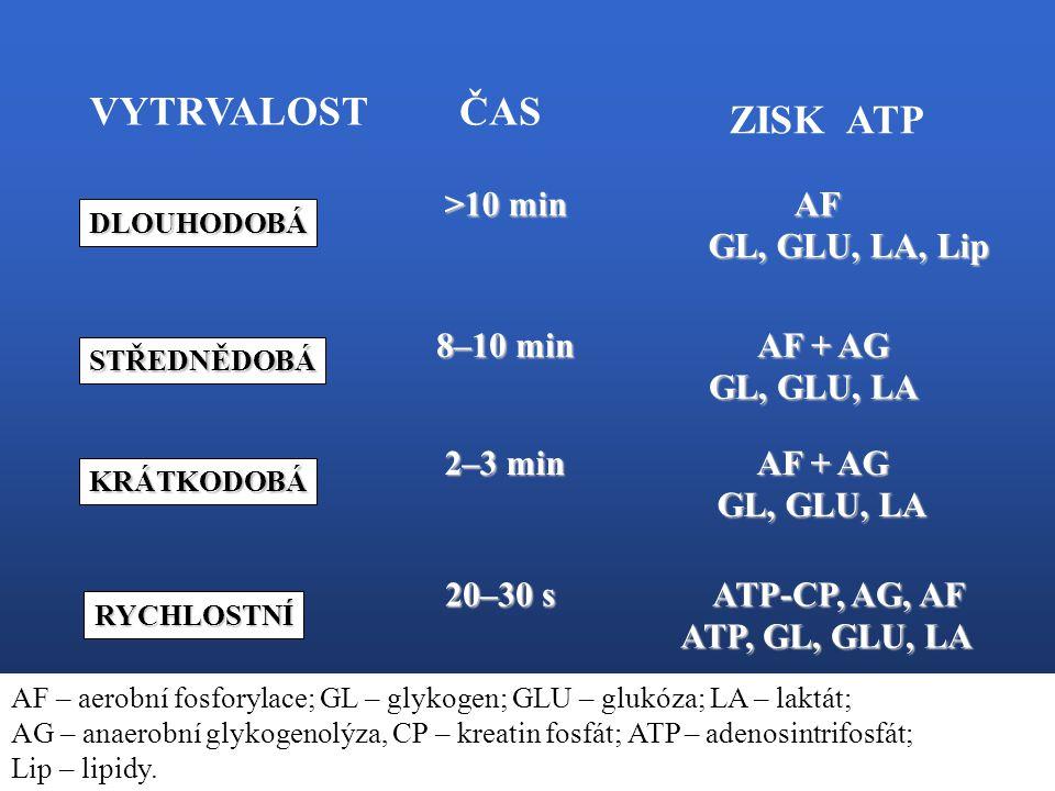 VYTRVALOST ČAS ZISK ATP >10 min AF GL, GLU, LA, Lip