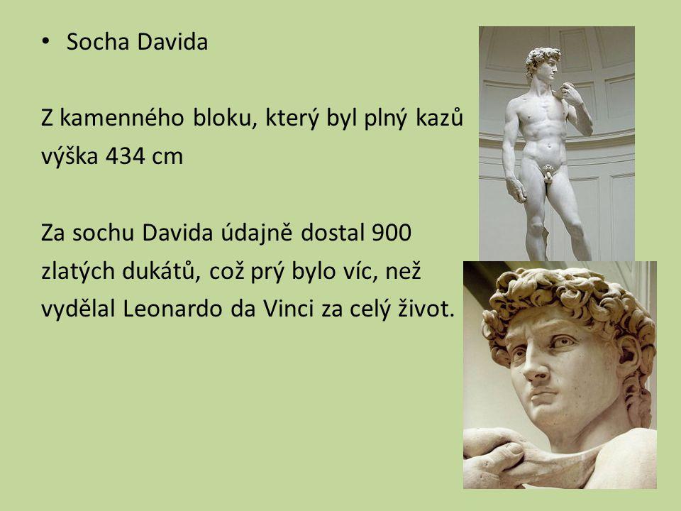 Socha Davida Z kamenného bloku, který byl plný kazů. výška 434 cm. Za sochu Davida údajně dostal 900.