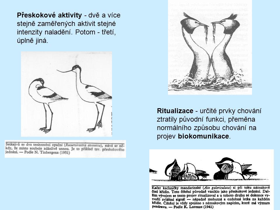 Přeskokové aktivity - dvě a více stejně zaměřených aktivit stejné intenzity naladění. Potom - třetí, úplně jiná.