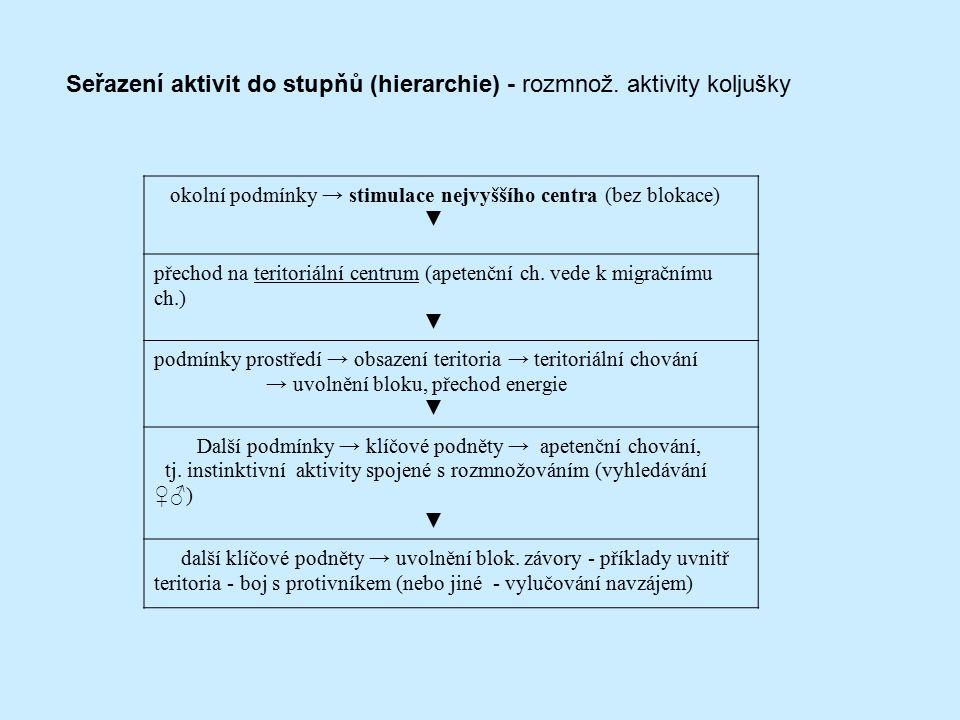 Seřazení aktivit do stupňů (hierarchie) - rozmnož. aktivity koljušky