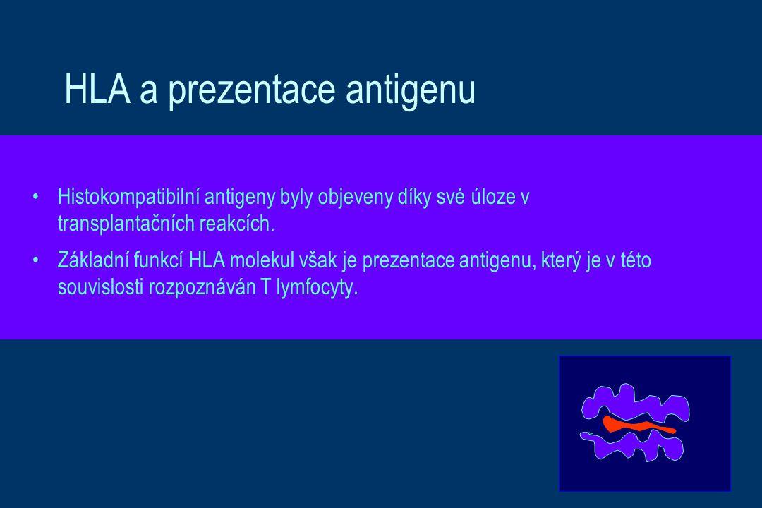 HLA a prezentace antigenu
