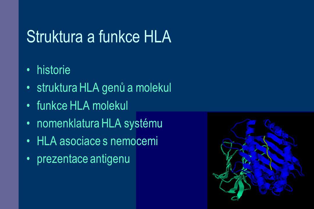 Struktura a funkce HLA historie struktura HLA genů a molekul