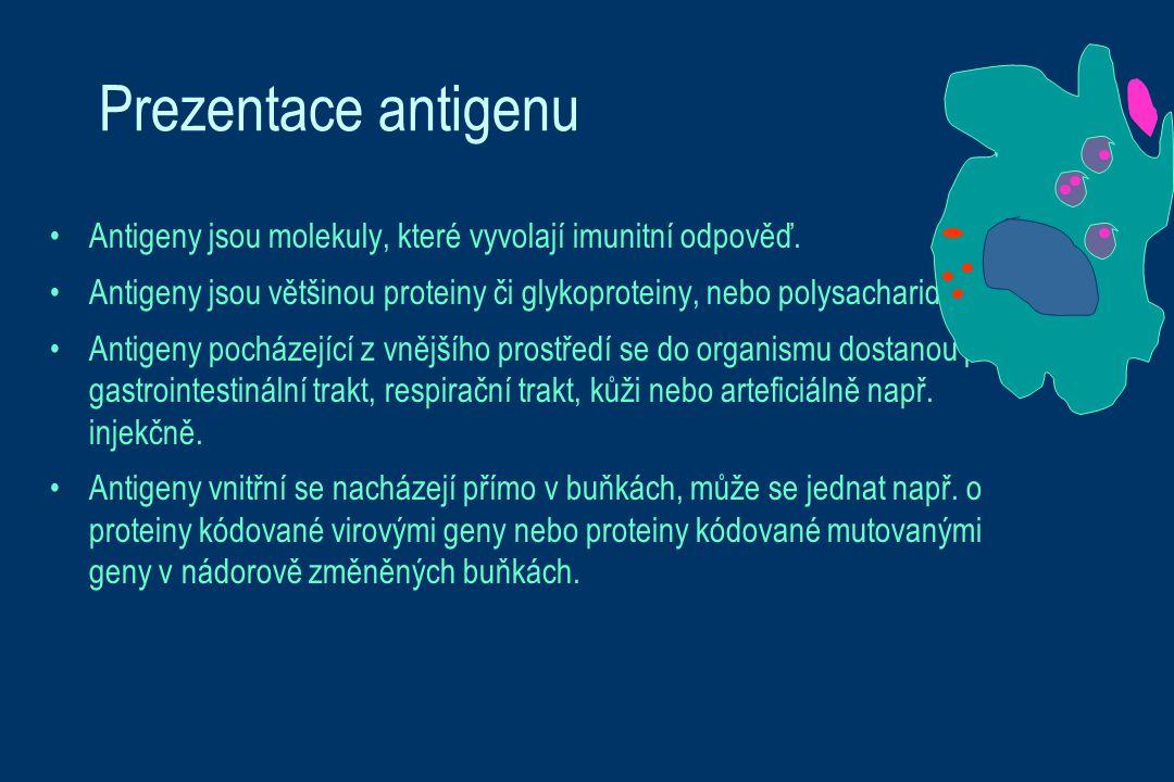 Prezentace antigenu Antigeny jsou molekuly, které vyvolají imunitní odpověď. Antigeny jsou většinou proteiny či glykoproteiny, nebo polysacharidy.