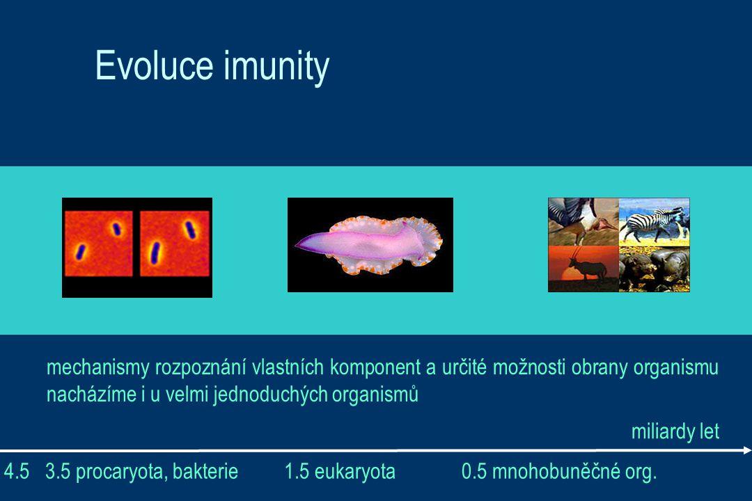 Evoluce imunity mechanismy rozpoznání vlastních komponent a určité možnosti obrany organismu nacházíme i u velmi jednoduchých organismů.