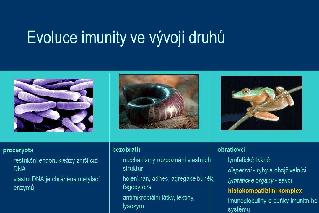 Evoluce imunity ve vývoji druhů